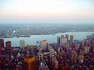 New York City View by Benedikt Amrhein