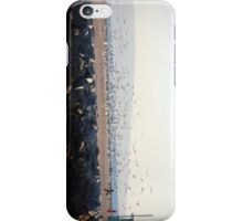 The Birds... iPhone Case/Skin