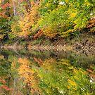 Ouachita Fall by Gregory Ballos | gregoryballosphoto.com
