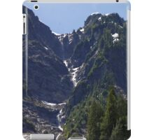 Avalanche Circle Of Trees  iPad Case/Skin