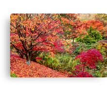Symphony of Leaves Canvas Print