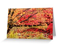 Autumn Leaves Over Pond Greeting Card