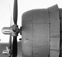 B-29 by Shawn Powell