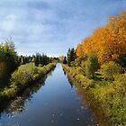 Candle Lake Scenic - Saskatchewan by Lynda   McDonald