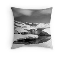 Snowy River in Spring Throw Pillow
