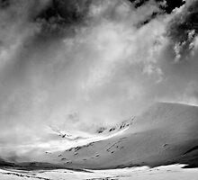 Sunlit moment, Main Range by Jan Glover