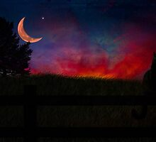 Quiet evening on the Farm by Megan Noble