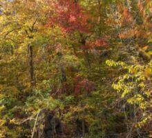 Autumn Glory - Unami Creek Sumneytown Pennsylvania USA Sticker