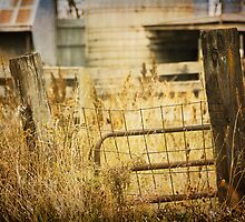 Fence Posts by KBritt