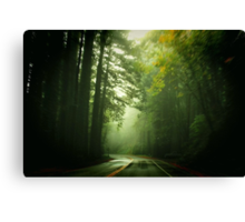 Driving Through Fog Canvas Print