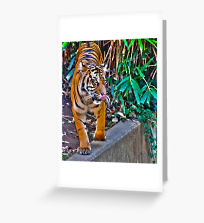 Is it time for lunch? Greeting Card