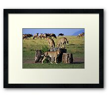 Living with the Enemy Framed Print