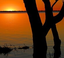 Lake Pammamaroo NSW by Collymack