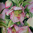 Lenten Roses by Huckleberry20