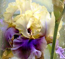 Fabulous Flora Calendar by Chris Armytage by Chris Armytage™