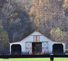 White Barn in Autumn by mltrue