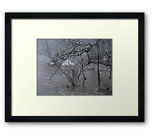 Gumballs Above the Winter Flood Framed Print