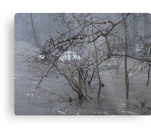 Gumballs Above the Winter Flood Metal Print