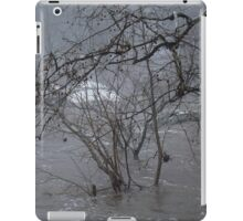 Gumballs Above the Winter Flood iPad Case/Skin
