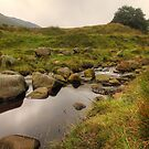 The Rugged Beauty That Is Dovestones by WOBBLYMOL