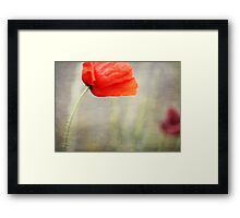 And we shall remember them....... Framed Print