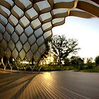 Wooden Arch in Chicago by Sven Brogren