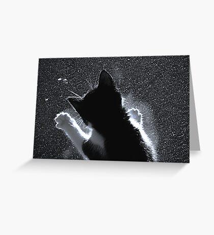 Kitten Chasing Snowflakes Greeting Card