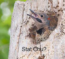 Stat Chu? IPhone case by DigitallyStill
