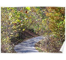 Winding autumn lane Poster