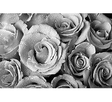 Bouquet of Roses with Water Drops in Black and White Photographic Print