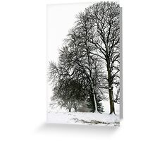 Trees in the Snow, Petworth Greeting Card