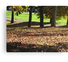 Mates in the park Canvas Print