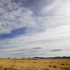 Desert - New Mexico by mattnnat