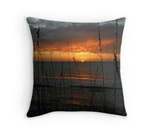 Farewell To The Day ~ Part Sixteen Throw Pillow