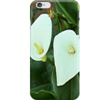 Day Lilies... iPhone Case/Skin