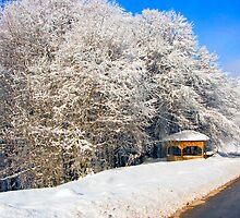 kioski under snow by Tania Koleska