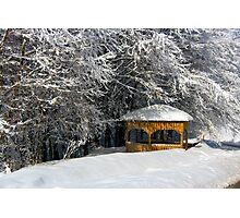 kioski under snowy trees Photographic Print
