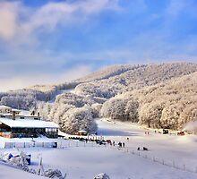 Snow center at Alps with sun by Tania Koleska