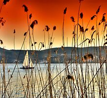 Sailng at Kastoria Lake (Makedonia, Greece) by Tania Koleska