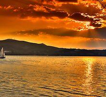 Sailing through the sun by Tania Koleska