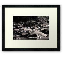 Rolling River Stones Framed Print