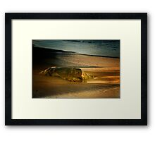 Moonstone Beach Rock at Sunrise Framed Print