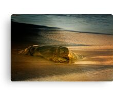 Moonstone Beach Rock at Sunrise Metal Print