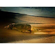 Moonstone Beach Rock at Sunrise Photographic Print