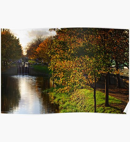 Grand Canal in autumn, Dublin, Ireland Poster