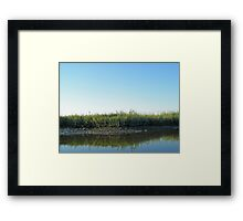 Low Tide in the Tidal Creek Framed Print