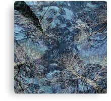 Frigid Landscape 3 Canvas Print