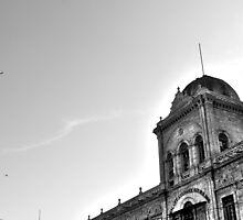 Victorian Building by mustafamalik