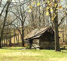 Old Log Shed by Annlynn Ward