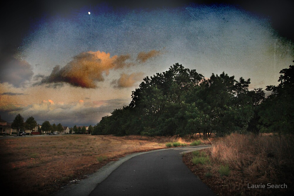 Dusk Begins to Fall by Laurie Search